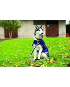 Amigo® Dog Leash Atlantic Blue/Ivory
