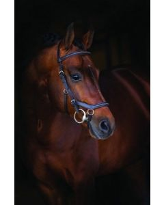 NEW! Rambo® Micklem Deluxe Competition Bridle